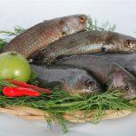 Đậm đà bát bún cá rô đồng Hải Dương