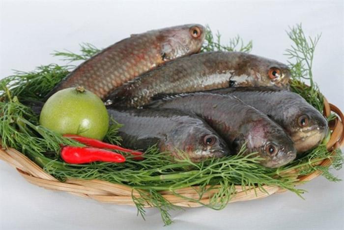Cá rô đồng - nguyên liệu không thể thiếu của món ăn