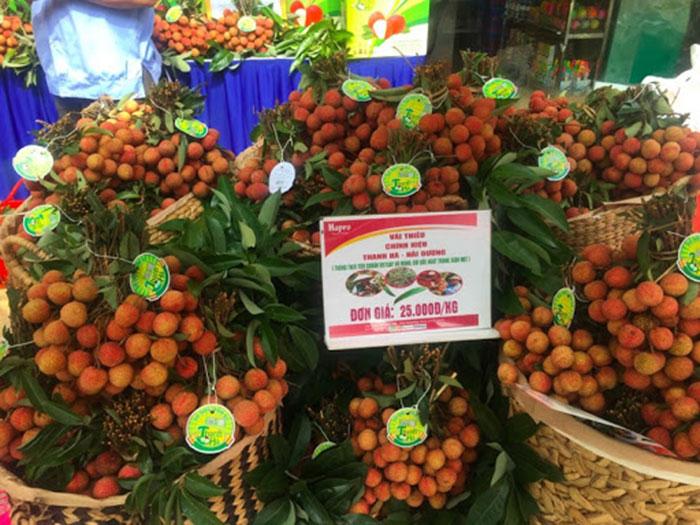 Vải thiều Thanh Hà tham gia nhiều hội chợ và xuất khẩu sang nước ngoài