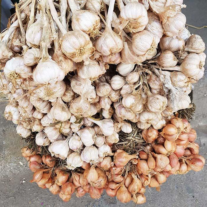 Kinh Môn - vùng đất nổi tiếng trồng hành, tỏi